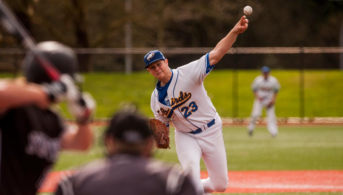 2015_UBC_Baseball_Home2